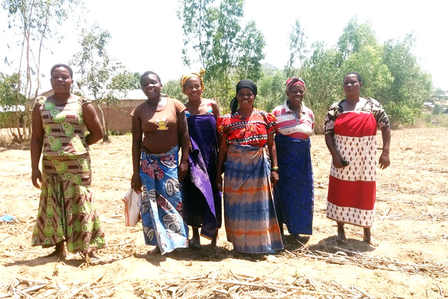 Some Members Of Chiradzulu Farmers Club Captures In A Filed Visit In November