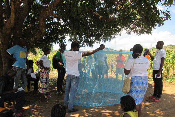 Demo on the correct use of mosquito net