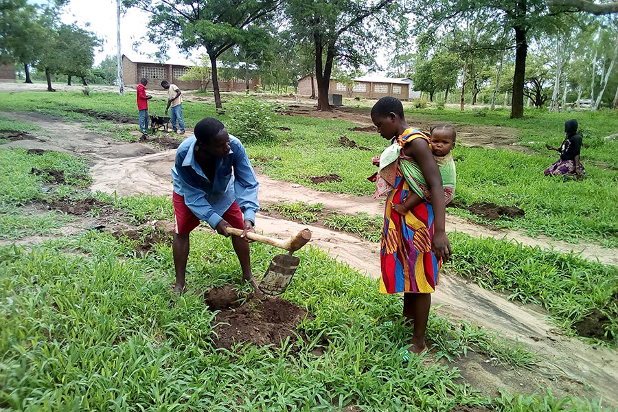 Community members take part in tree planting exercises in schools