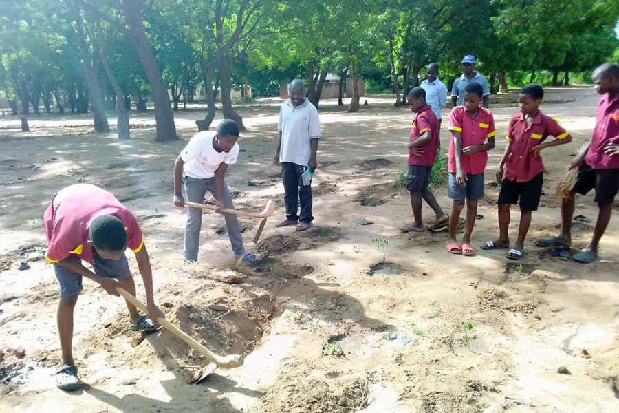 Learners digging up holes to plant trees