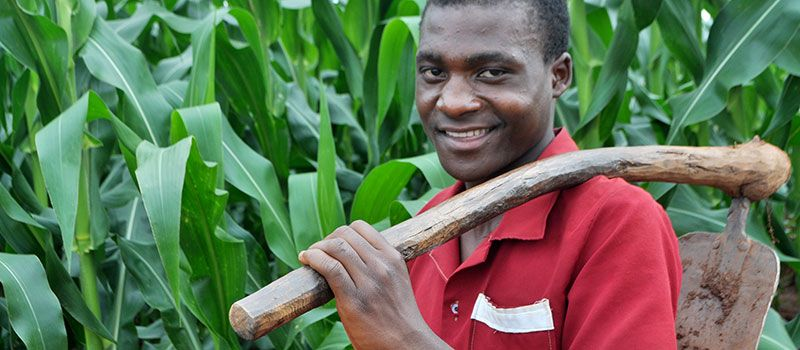 DAPP-Malawi-Agriculture-Key-Towards-Improved-Livelihoods